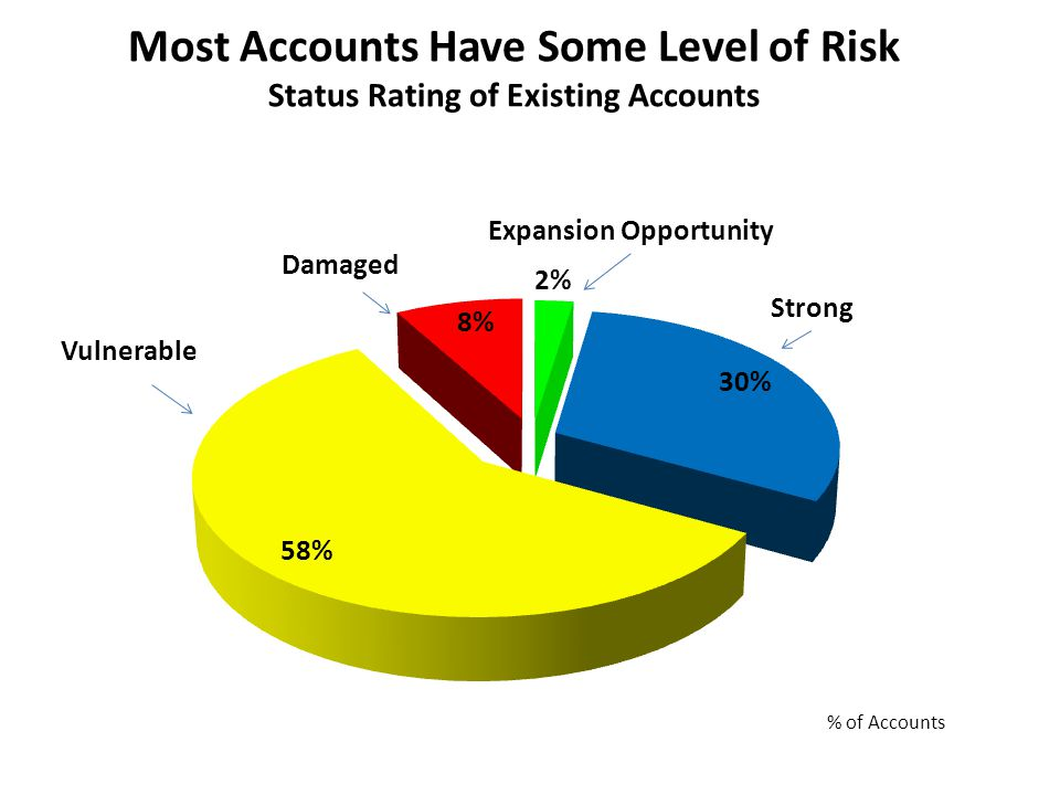 Damaged Vulnerable Strong Expansion Opportunity Most Accounts Have Some Level of Risk Status Rating of Existing Accounts
