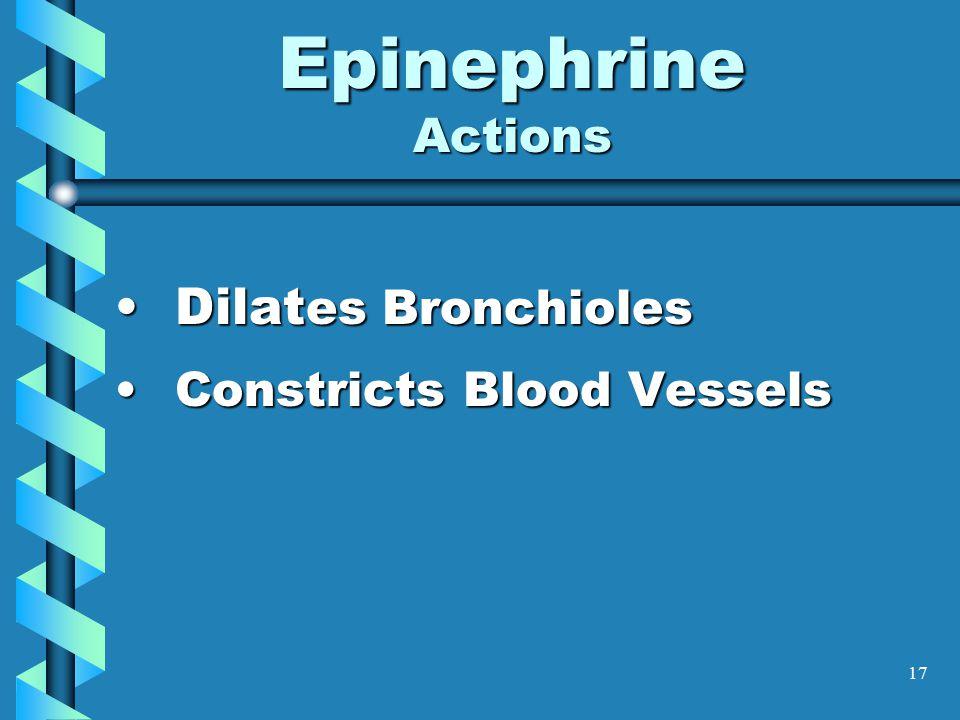 17 Epinephrine Actions Dilat es BronchiolesDilat es Bronchioles Constricts Blood VesselsConstricts Blood Vessels