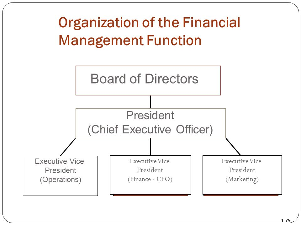 1-75 Organization of the Financial Management Function Board of Directors President (Chief Executive Officer) Executive Vice President (Operations) Ex