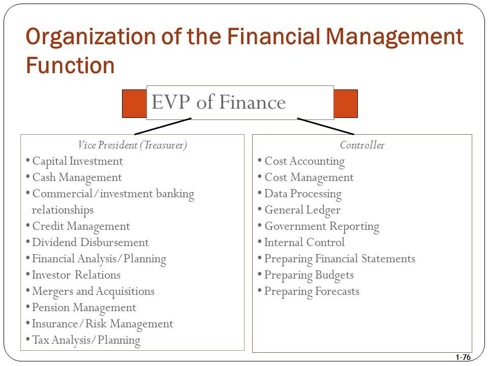 1-76 Vice President (Treasurer) Capital Investment Cash Management Commercial/investment banking relationships Credit Management Dividend Disbursement