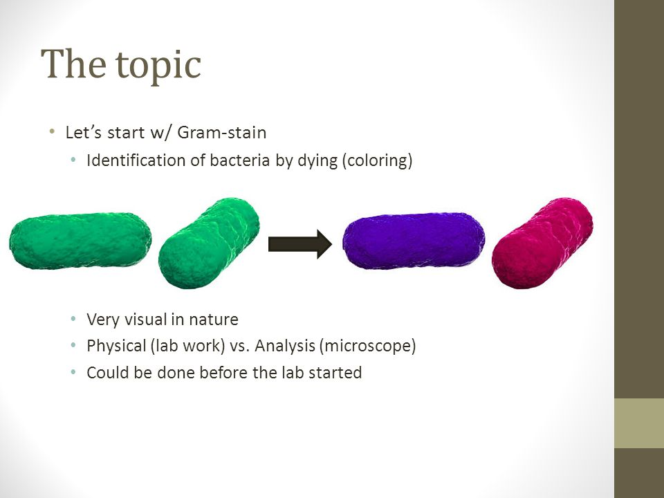 The topic Let's start w/ Gram-stain Identification of bacteria by dying (coloring) Very visual in nature Physical (lab work) vs.