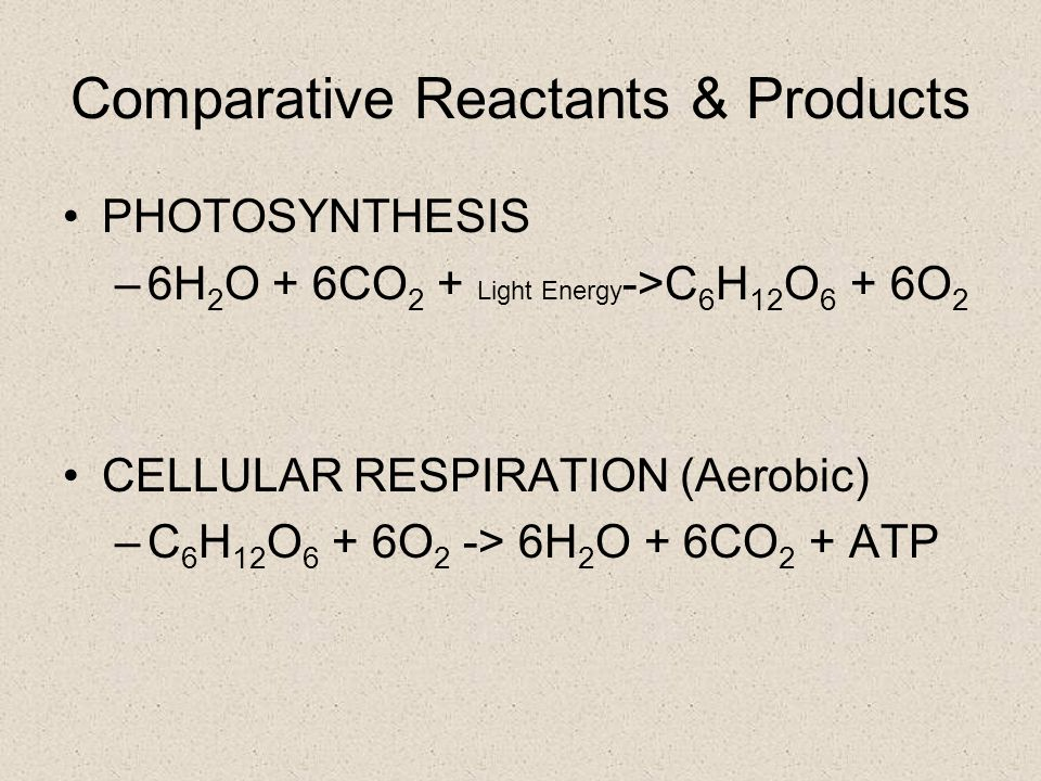 Comparative Reactants & Products PHOTOSYNTHESIS –6H 2 O + 6CO 2 + Light Energy ->C 6 H 12 O 6 + 6O 2 CELLULAR RESPIRATION (Aerobic) –C 6 H 12 O 6 + 6O