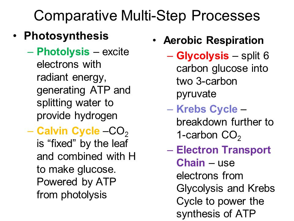 Comparative Multi-Step Processes Photosynthesis –Photolysis – excite electrons with radiant energy, generating ATP and splitting water to provide hydr