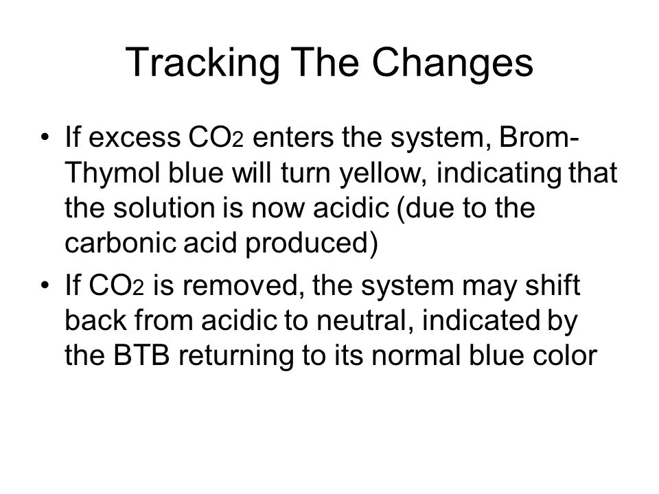 Tracking The Changes If excess CO 2 enters the system, Brom- Thymol blue will turn yellow, indicating that the solution is now acidic (due to the carb