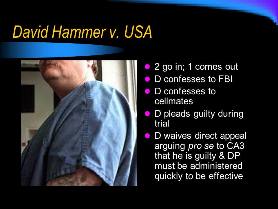David Hammer v.
