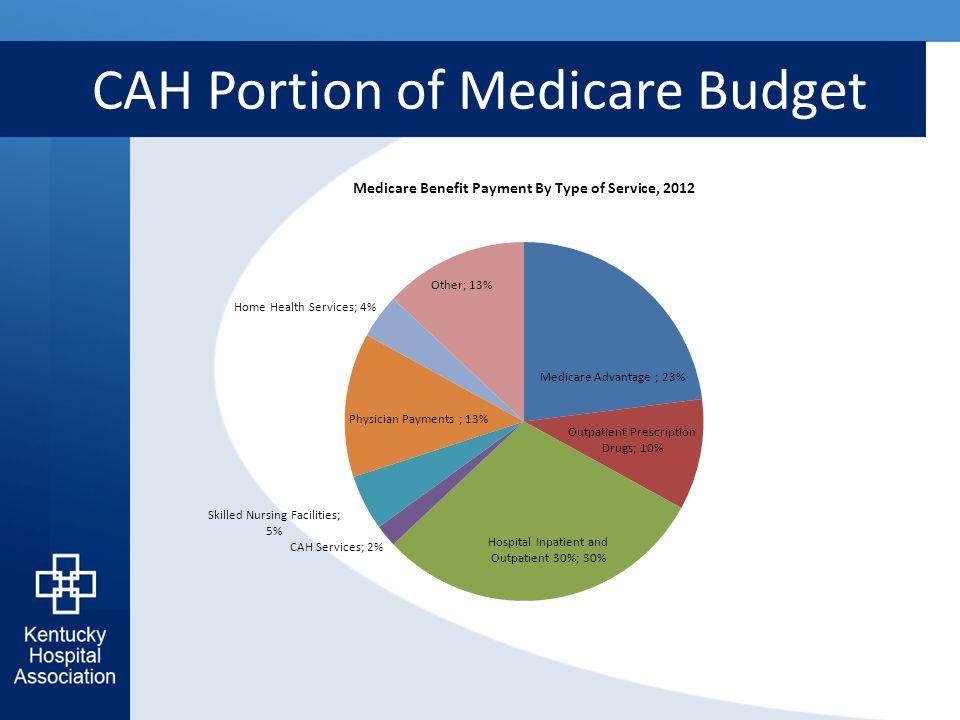 CAH Portion of Medicare Budget