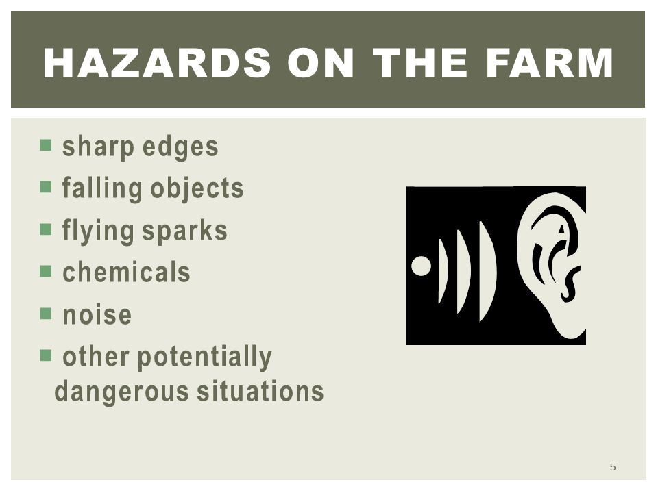  sharp edges  falling objects  flying sparks  chemicals  noise  other potentially dangerous situations HAZARDS ON THE FARM 5
