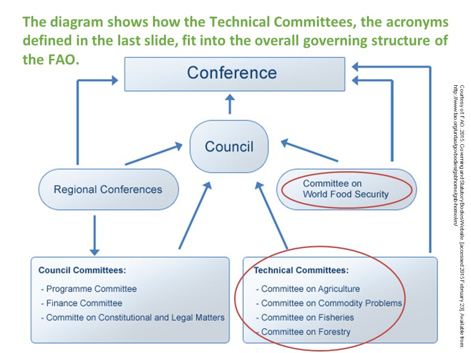 The diagram shows how the Technical Committees, the acronyms defined in the last slide, fit into the overall governing structure of the FAO.