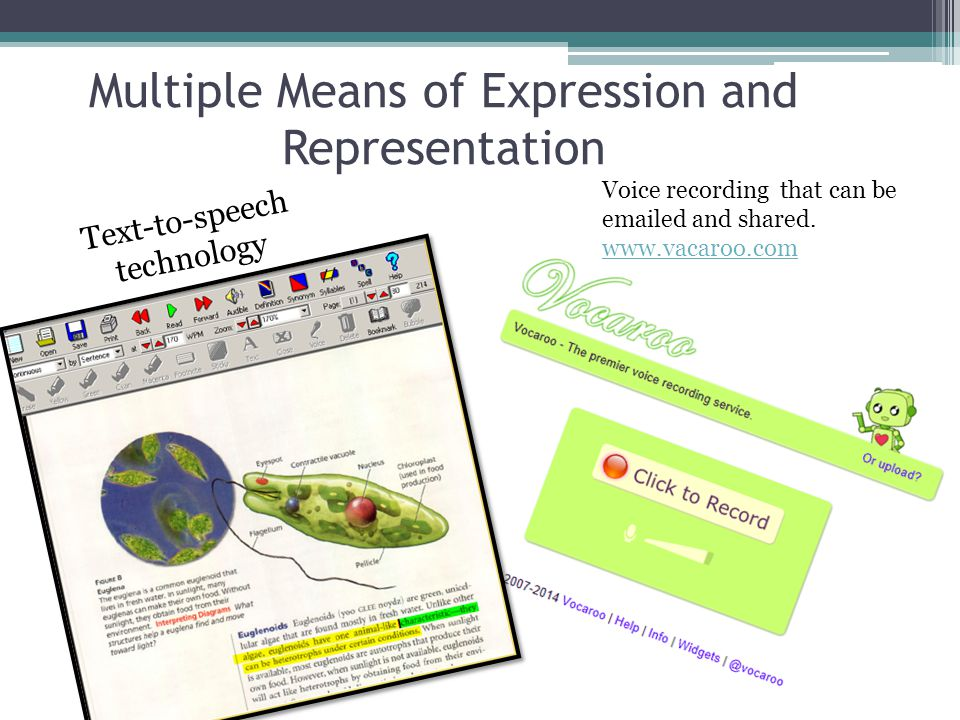 Multiple Means of Expression and Representation Text-to-speech technology Voice recording that can be emailed and shared.