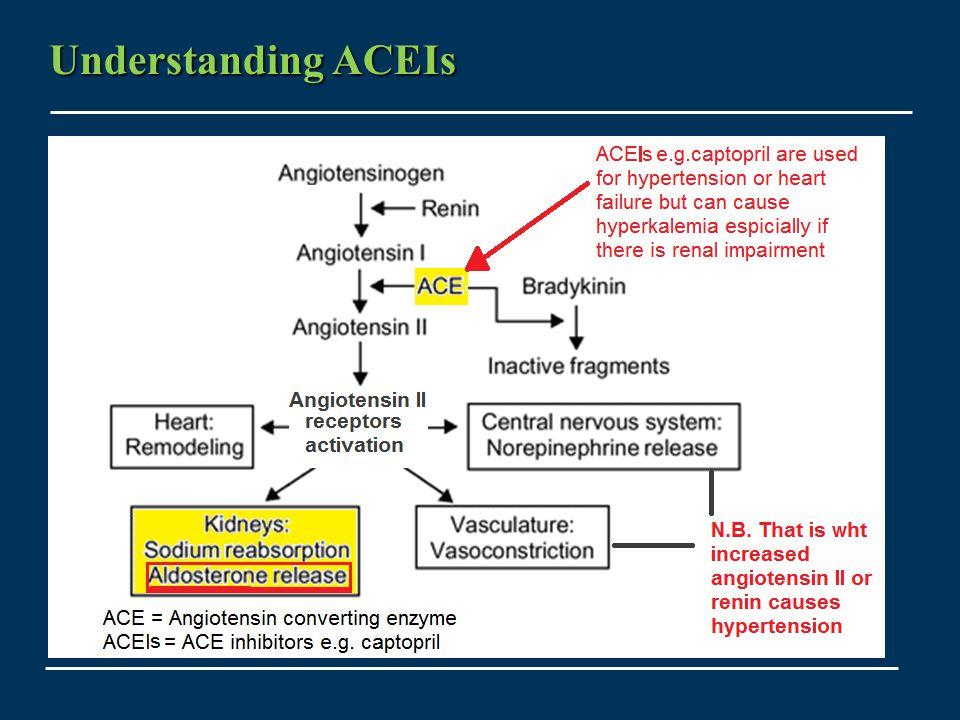 Understanding ACEIs