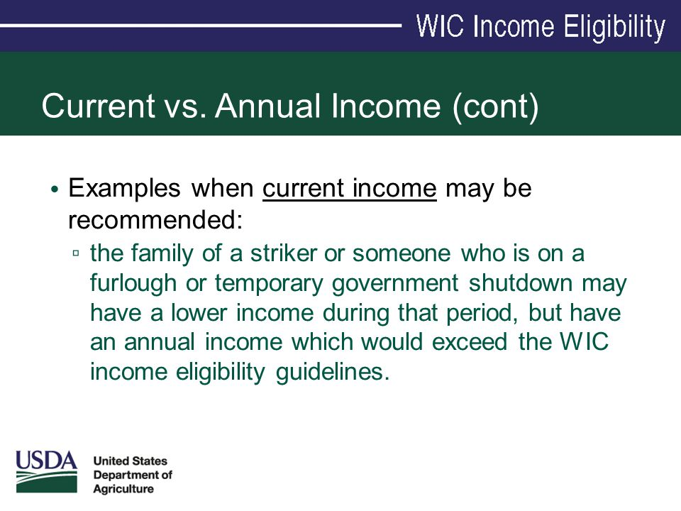 Current vs. Annual Income (cont) Examples when current income may be recommended: ▫ the family of a striker or someone who is on a furlough or tempora