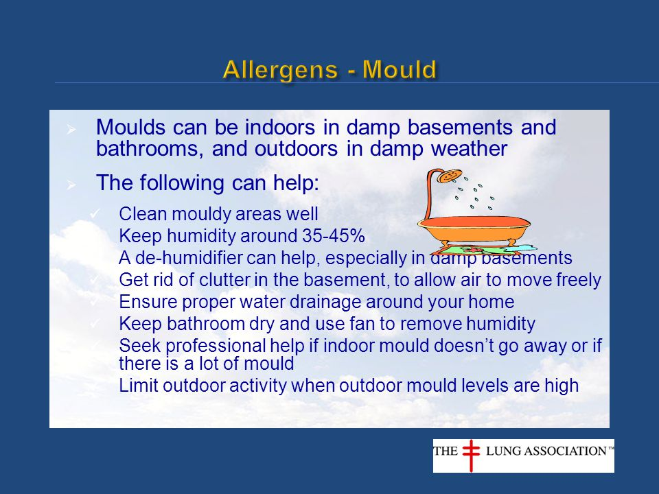  Moulds can be indoors in damp basements and bathrooms, and outdoors in damp weather  The following can help: Clean mouldy areas well Keep humidity