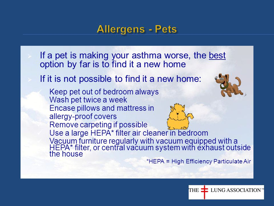  If a pet is making your asthma worse, the best option by far is to find it a new home  If it is not possible to find it a new home: Keep pet out of