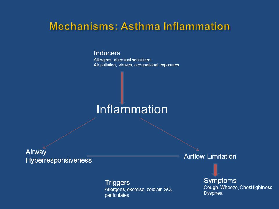  Role of noninvasive measurements of airway inflammation for the adjustment of anti- inflammatory therapy  The initiation of adjunct therapy to ICS for uncontrolled asthma  The role of single inhaler ICS/long acting beta 2 agonist as a reliever  Escalation of controller for acute loss of asthma control as a part of self management