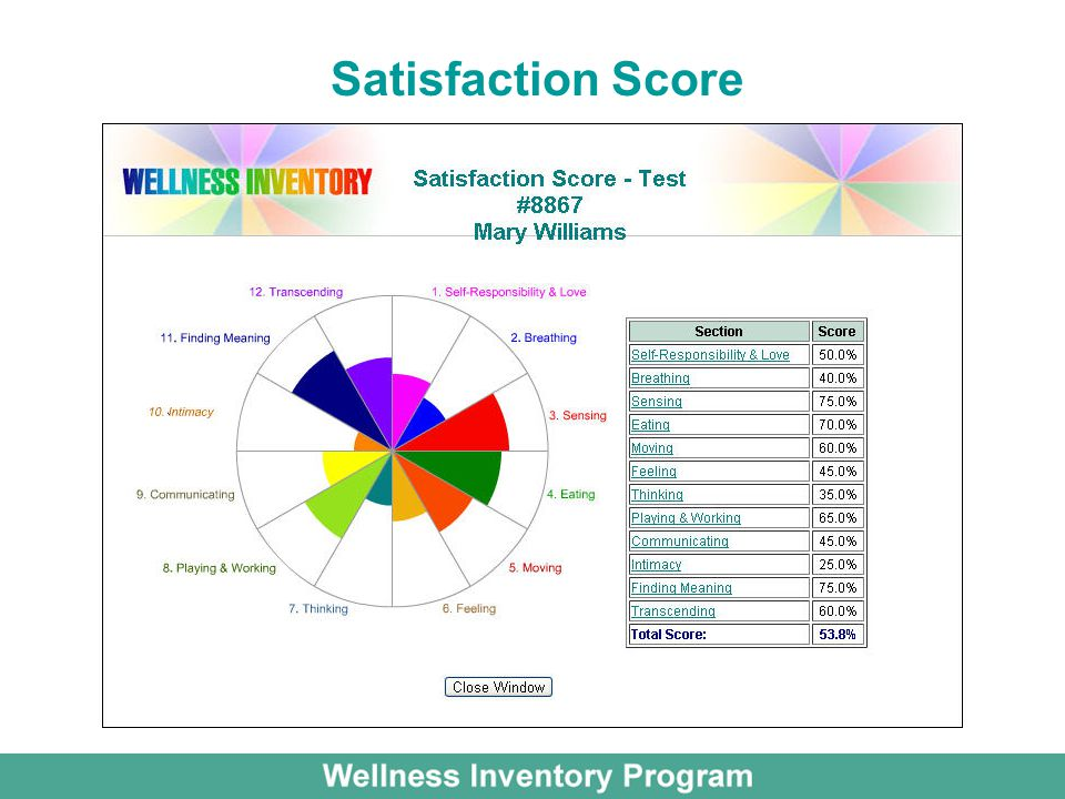 Satisfaction Score
