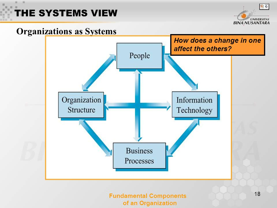 18 Organizations as Systems Fundamental Components of an Organization How does a change in one affect the others? THE SYSTEMS VIEW