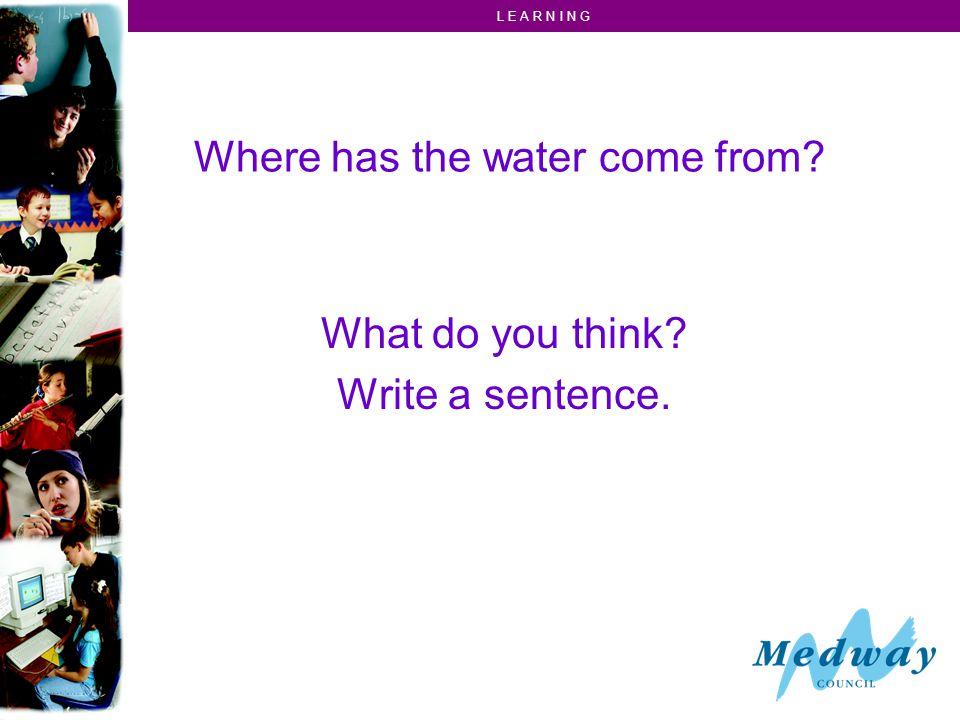 L E A R N I N G Where has the water come from What do you think Write a sentence.