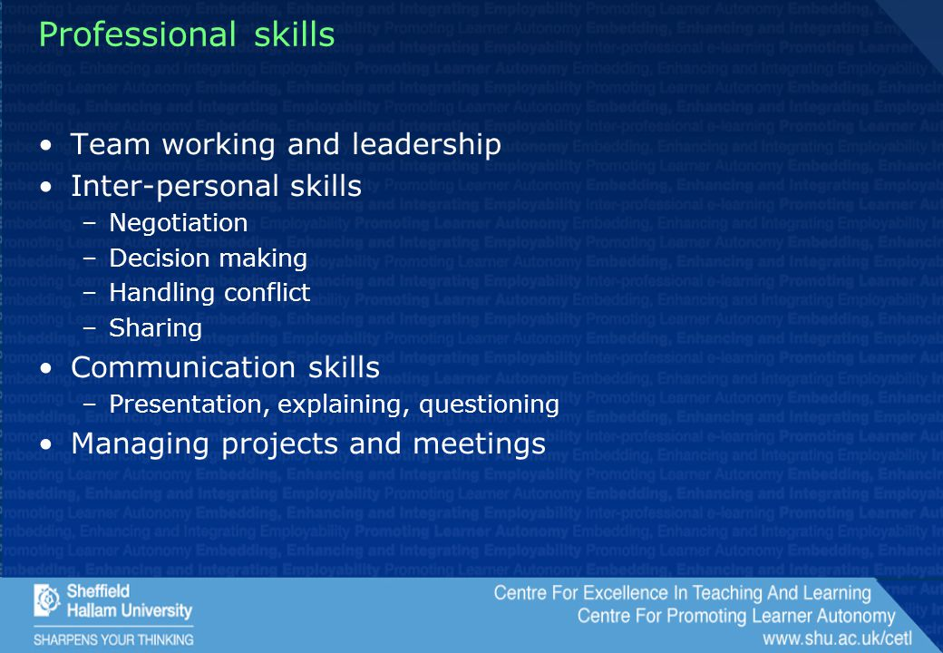 Professional skills Team working and leadership Inter-personal skills –Negotiation –Decision making –Handling conflict –Sharing Communication skills –Presentation, explaining, questioning Managing projects and meetings