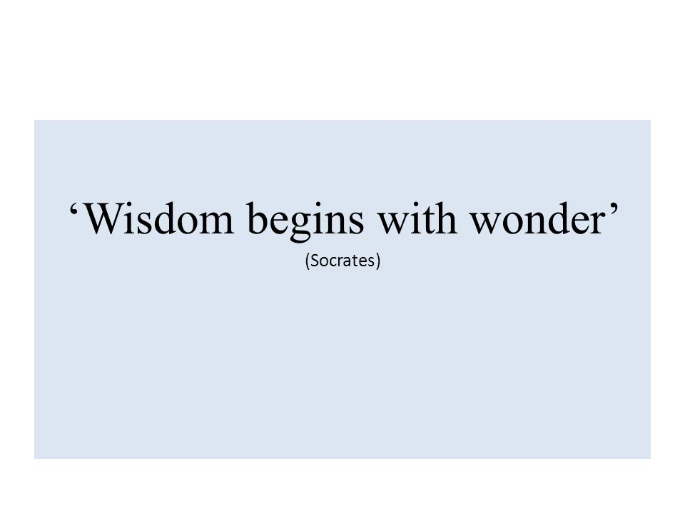 'Wisdom begins with wonder' (Socrates)