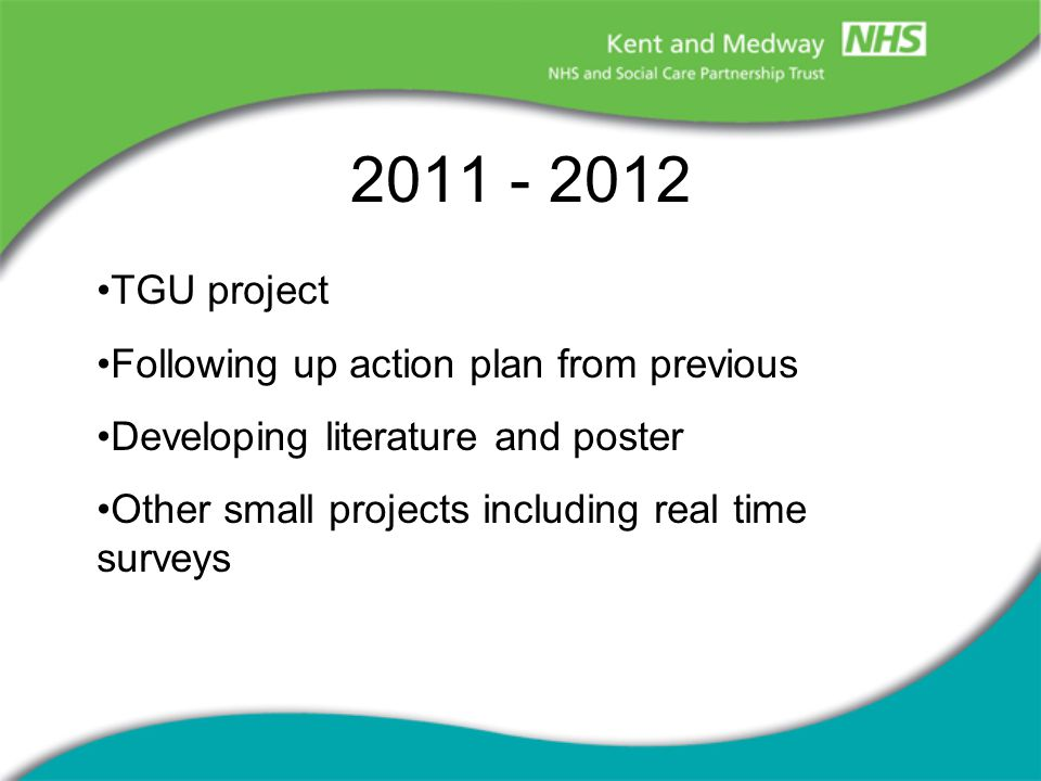 2011 - 2012 TGU project Following up action plan from previous Developing literature and poster Other small projects including real time surveys
