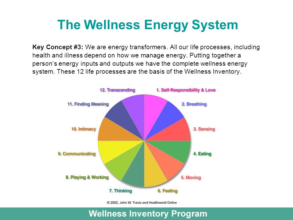 The Wellness Energy System Key Concept #3: We are energy transformers.