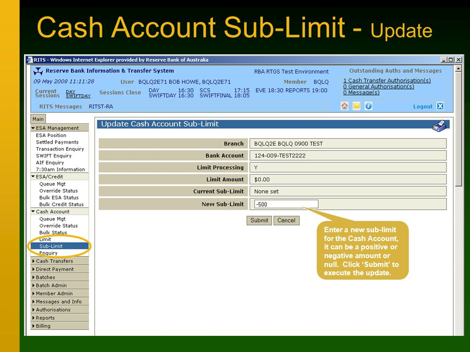 Cash Account Sub-Limit - Update Enter a new sub-limit for the Cash Account, it can be a positive or negative amount or null.