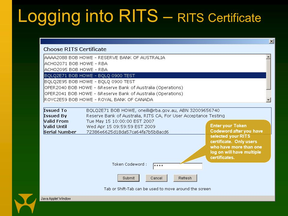 Logging into RITS – RITS Certificate Enter your Token Codeword after you have selected your RITS certificate.
