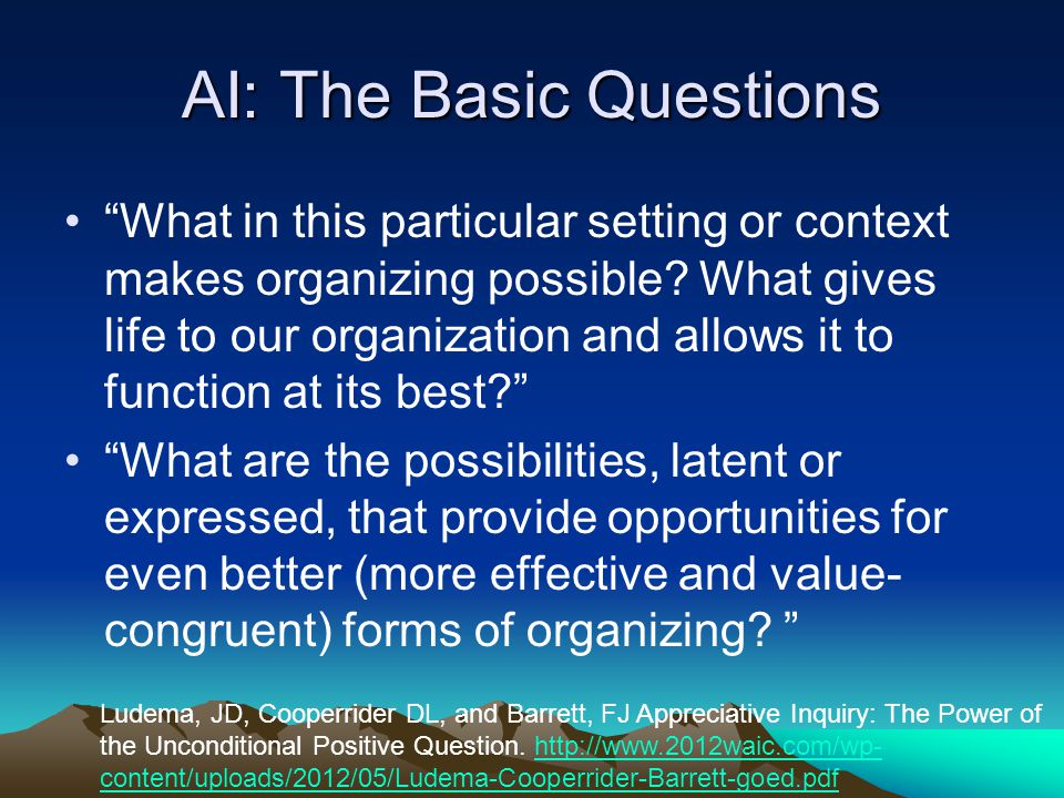 AI: The Basic Questions What in this particular setting or context makes organizing possible.