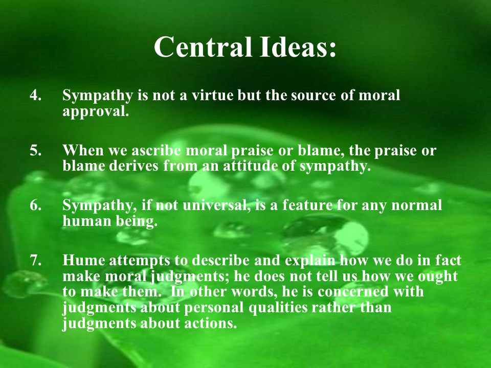 Central Ideas: 4.Sympathy is not a virtue but the source of moral approval.