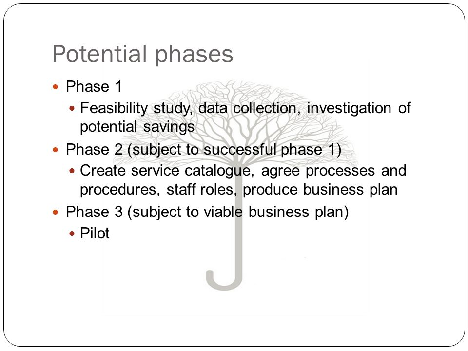 Potential phases Phase 1 Feasibility study, data collection, investigation of potential savings Phase 2 (subject to successful phase 1) Create service