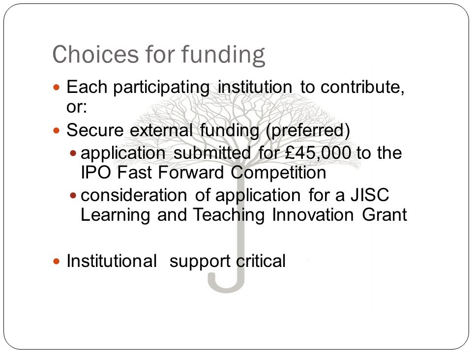 Choices for funding Each participating institution to contribute, or: Secure external funding (preferred) application submitted for £45,000 to the IPO