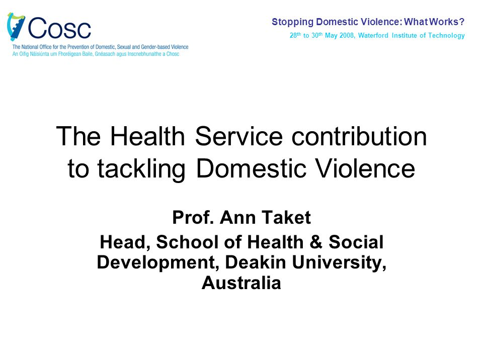 Outline Scale and nature of intimate partner abuse Health consequences Routine and selective enquiry Women's experience Health professional views Models for enquiry Training, support and other needs Stopping Domestic Violence: What Works.