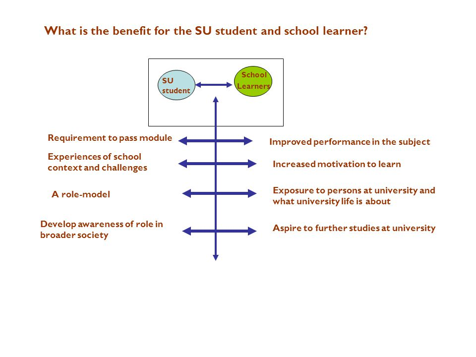 SU student School Learners What is the benefit for the SU student and school learner? Improved performance in the subject Increased motivation to lear