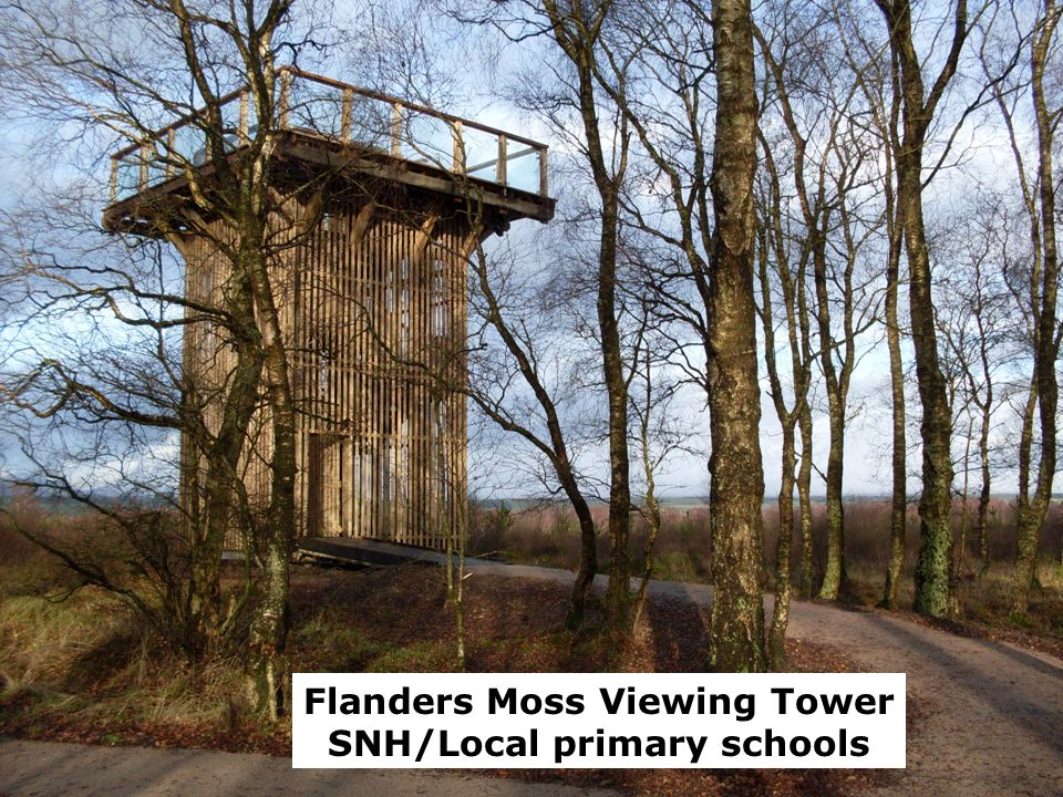 Flanders Moss Flanders Moss Viewing Tower SNH/Local primary schools
