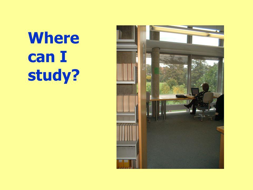 Where can I study?