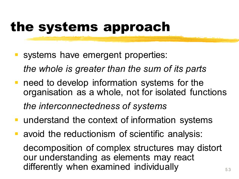 5.3  systems have emergent properties: the whole is greater than the sum of its parts  need to develop information systems for the organisation as a