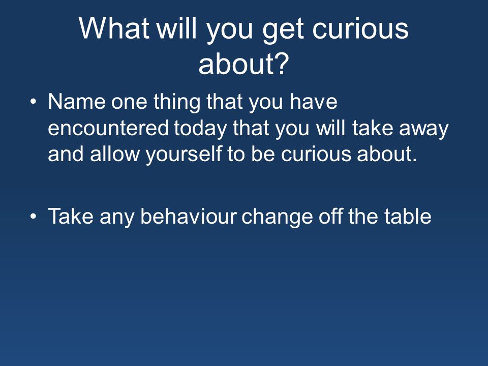 What will you get curious about.