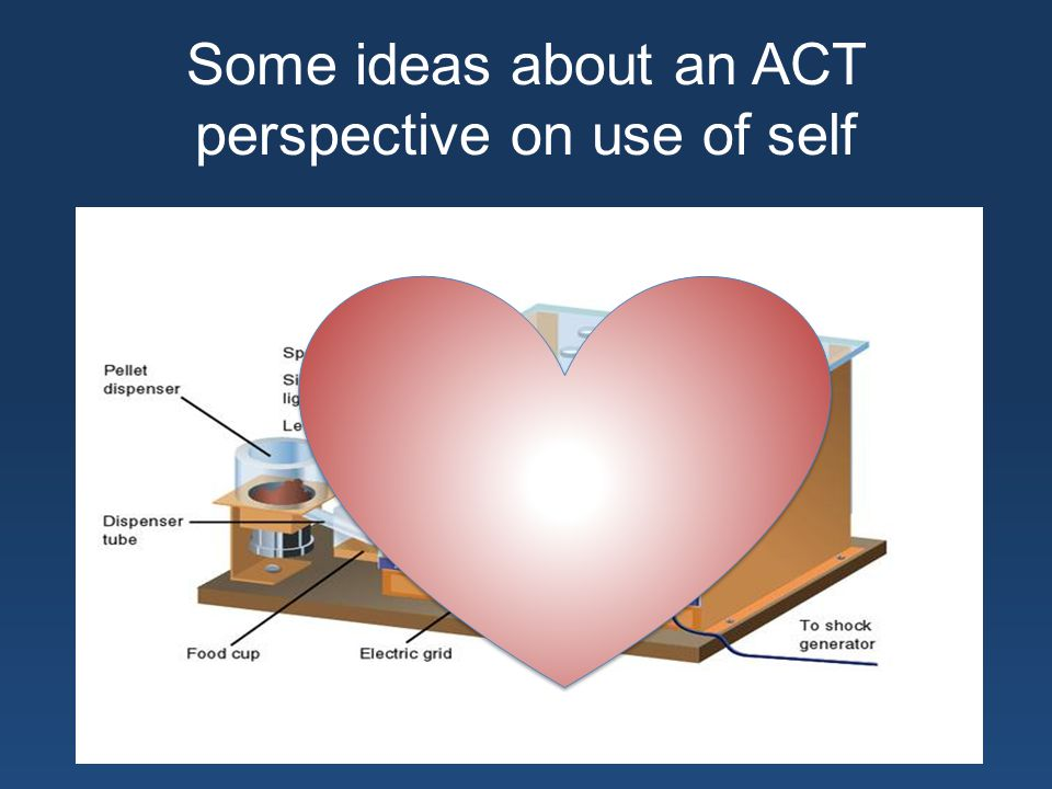 Some ideas about an ACT perspective on use of self