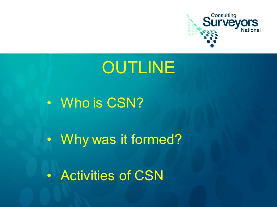OUTLINE Who is CSN? Why was it formed? Activities of CSN