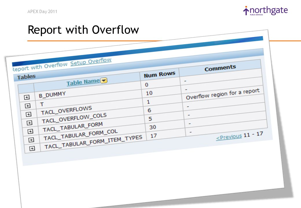 APEX Day 2011 Report with Overflow