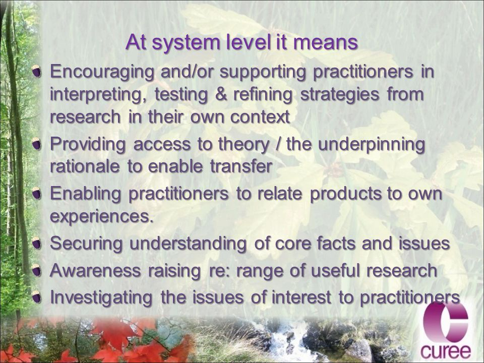 At system level it means Encouraging and/or supporting practitioners in interpreting, testing & refining strategies from research in their own context Providing access to theory / the underpinning rationale to enable transfer Enabling practitioners to relate products to own experiences.