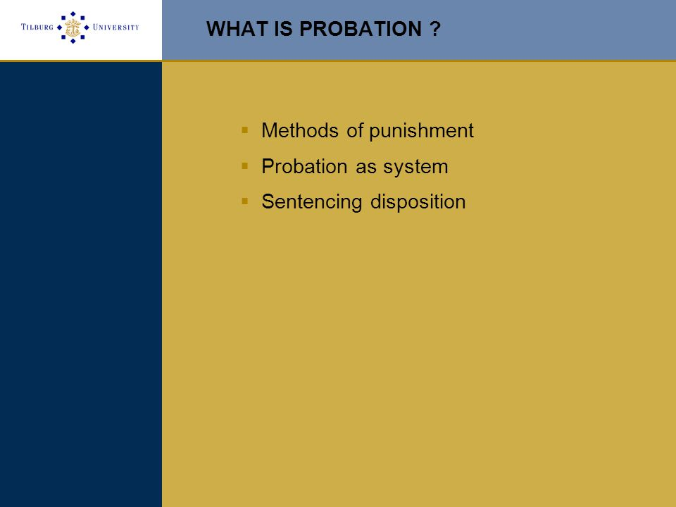 WHAT IS PROBATION  Methods of punishment  Probation as system  Sentencing disposition