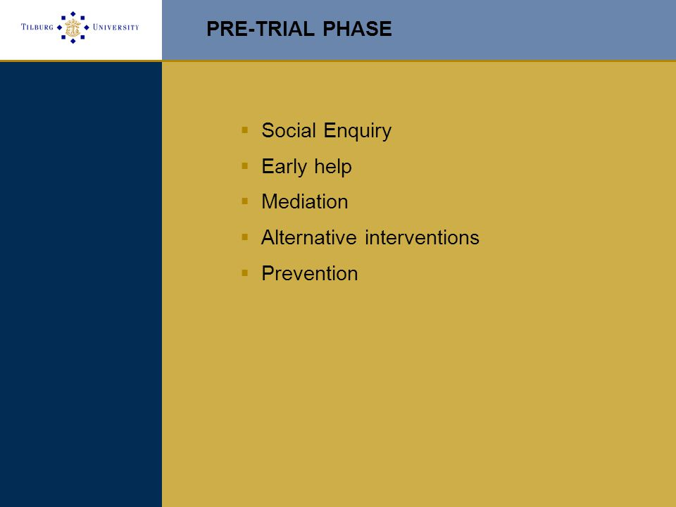 PRE-TRIAL PHASE  Social Enquiry  Early help  Mediation  Alternative interventions  Prevention