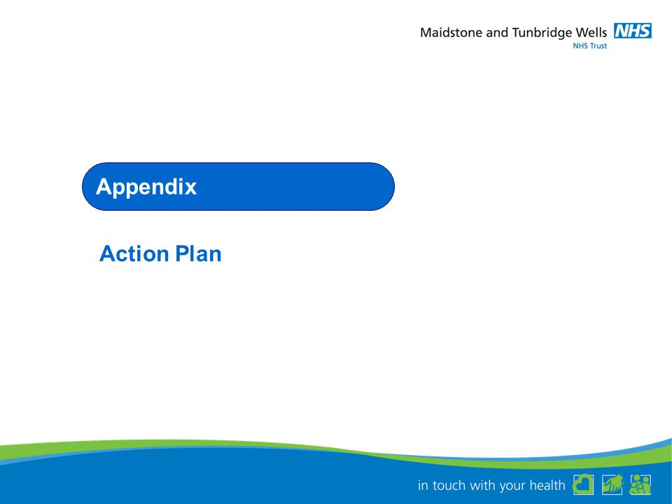 Appendix Action Plan