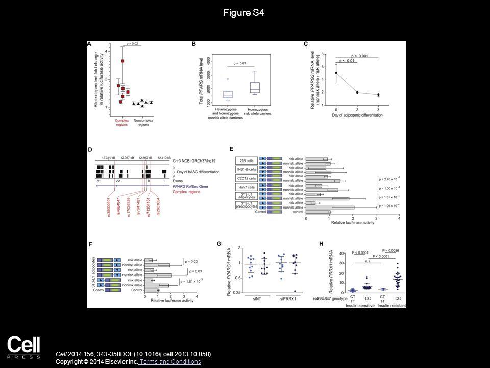 Figure S4 Cell 2014 156, 343-358DOI: (10.1016/j.cell.2013.10.058) Copyright © 2014 Elsevier Inc. Terms and Conditions Terms and Conditions