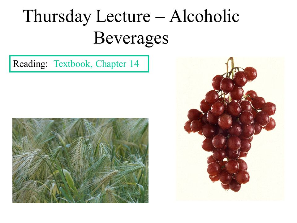 Thursday Lecture – Alcoholic Beverages Reading: Textbook, Chapter 14