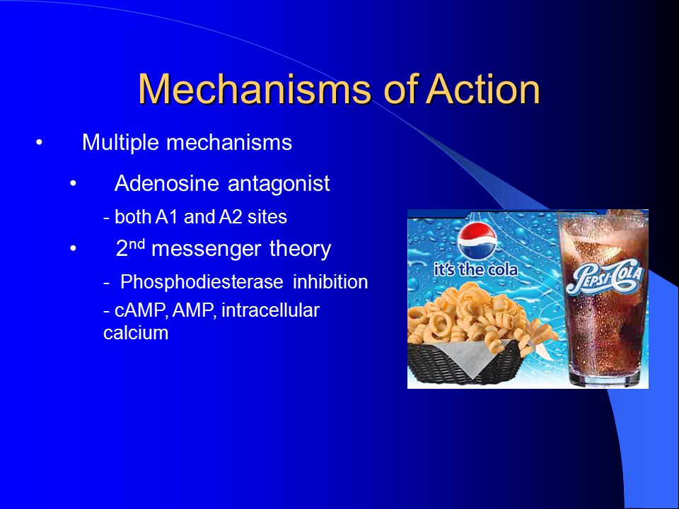 Mechanisms of Action Multiple mechanisms Adenosine antagonist - both A1 and A2 sites 2 nd messenger theory - Phosphodiesterase inhibition - cAMP, AMP, intracellular calcium