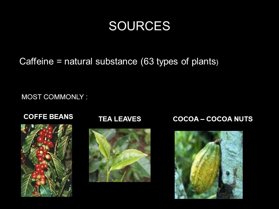 SOURCES Caffeine = natural substance (63 types of plants ) COFFE BEANS TEA LEAVESCOCOA – COCOA NUTS SOURCES Caffeine = natural substance (63 types of plants ) MOST COMMONLY :