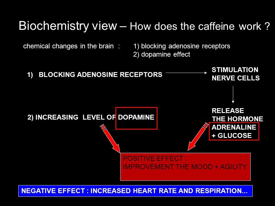 Biochemistry view – How does the caffeine work .