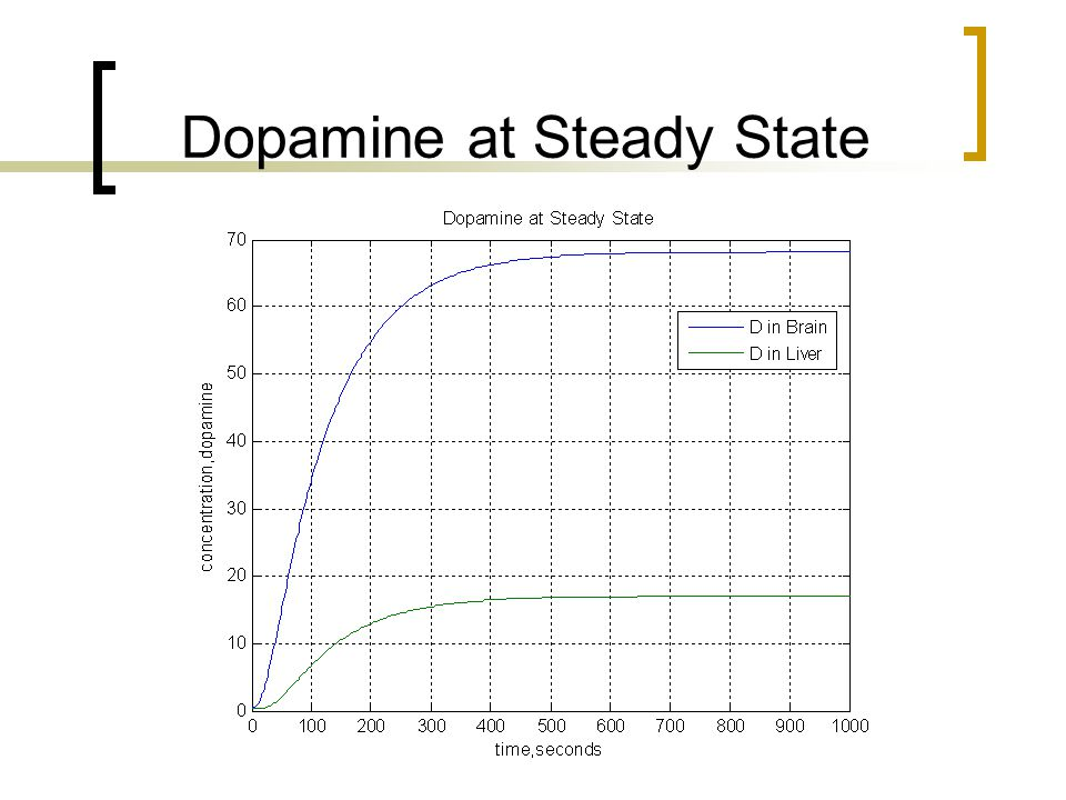 Dopamine at Steady State